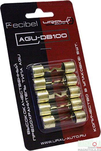 2913)URAL AGU-DB100