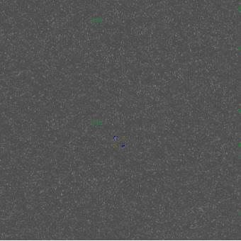 2888)MYSTERY GREY